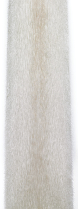Норка жемчуг (pearl). Светлый оттенок бежевой норки.