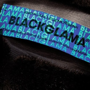 Blackglama: ������� ������� ��������� ����������� ����