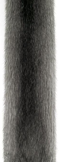 Норка голубой ирис (blue iris). Самый темный оттенок серой норки со светлой подпушью.