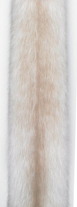 Норка крестовка/пастель-кросс (pastel cross). Белая норка со светло-коричневыми отметинами вдоль спинки.