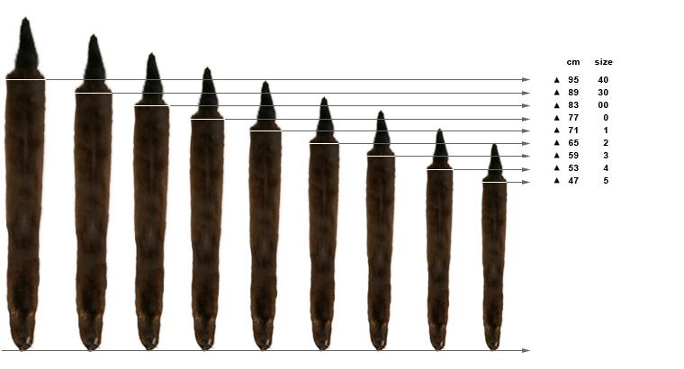 Размеры норки