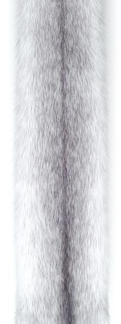 Норка крестовка/сапфир-кросс (sapphire cross). Белая норка с голубовато-серыми отметинами вдоль спинки.
