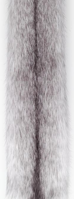 Норка крестовка/сильвер-кросс (silver cross). Белая норка с серыми отметинами вдоль спинки.