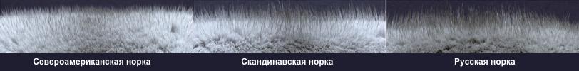 Высота ворса у норки
