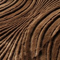 Способы обработки и выделки меха